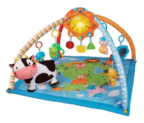 Medium Of Baby Play Gym